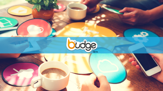 Budge - Nonprofit App