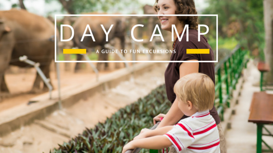 4 Fun Excursions For Day Campers