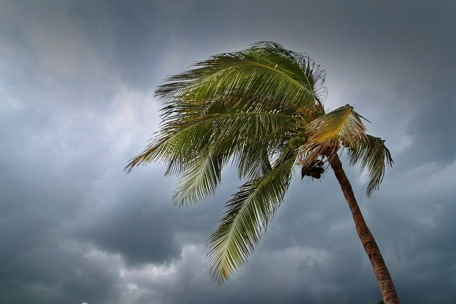 Hurricane Season Tips 2015