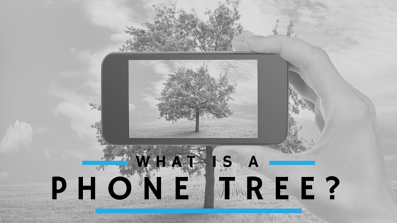 What Is A Phone Tree?